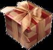 Employee gift icon
